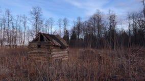 在森林timelapse的小老木小屋 股票视频