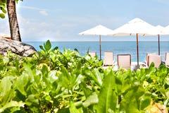 在椅子和伞附近使与植物的旁边休息区靠岸 免版税库存图片