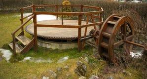 在植物中盖的水轮 库存照片