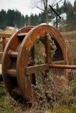 在植物中盖的水轮 免版税图库摄影