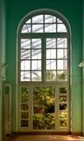 在植物园的里面在圣彼德堡 科马罗夫火山植物园 库存照片