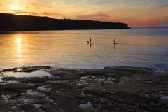 在植物学海湾的桨搭乘在日出 免版税库存图片
