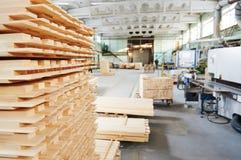 在植物的木木材材料 免版税图库摄影