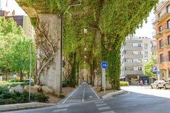 在植物的桥梁下 Girona西班牙 免版税图库摄影