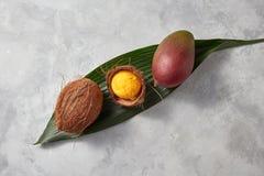 在椰子壳的一个芒果冰淇凌球在灰色具体背景的一片绿色叶子 顶视图 免版税库存图片