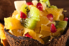 在椰子壳的可口明亮的热带点心 库存照片