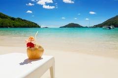 在椰子壳的热带鸡尾酒与红色木槿开花 库存图片