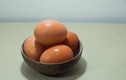 在椰子壳的鸡蛋 免版税库存图片
