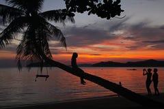 在椰子树阴影美丽的日落妇女女孩的摇摆或摇篮吊拍与家庭的照片在酸值Mak海岛海滩T 免版税库存图片