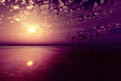 在椰子海岛的日落 免版税库存照片