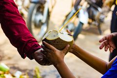在椰子的椰子水与秸杆被移交给孩子由卖主 自然热带饮料 库存照片