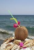 在椰子的鸡尾酒 免版税库存照片
