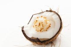 在椰子的Rocher 库存图片
