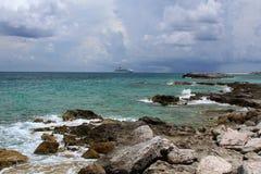 在椰树岩礁巴哈马的岩石海岸线 库存照片