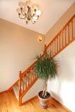 在楼梯附近的入口走廊 库存图片