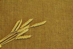 在概略的手织的黄麻帆布的金黄面包钉 符号概念-农村劳方,收获,面包,繁荣 最小的样式与 免版税库存图片