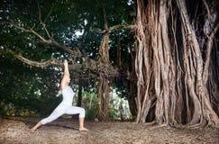 在榕树附近的瑜伽 库存图片