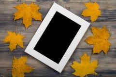 在槭树叶子中间的照片框架 免版税库存图片