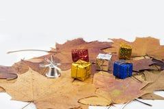 在槭树叶子的小装饰礼物 免版税库存图片