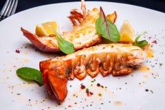 在槭树块菌调味汁的龙虾仁 库存照片