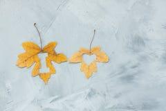 在槭树的i爱上写字在具体背景离开 图库摄影