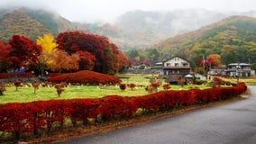 在槭树走廊, Kawaguchiko附近的日本村庄 库存图片