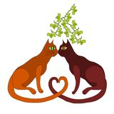 在槲寄生下的两只猫亲吻 免版税图库摄影