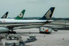 在樟宜机场终端1的新加坡航空公司 免版税图库摄影
