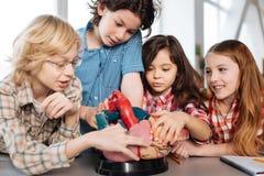 在模型附近被会集的小组学生 库存图片