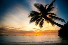 在模糊的日落海洋的可可椰子树 库存图片