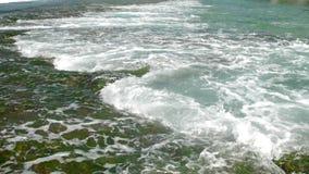 在模糊的珊瑚礁和海草的概略的海浪流程 股票录像
