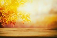 在模糊的秋天背景前面的空的桌 为产品显示蒙太奇准备 库存图片