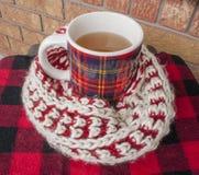 在模糊的围巾包裹的冬天茶 免版税库存照片