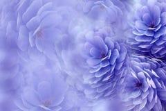 在模糊的紫罗兰色背景的水彩花 青紫罗兰色花菊花 花卉拼贴画 背景构成旋花植物空白花的郁金香 免版税库存图片