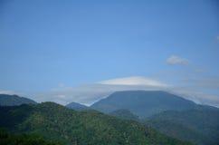 在横向泰国的菌盖 免版税库存照片