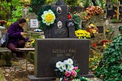 在横过喀尔巴阡山脉11月一日在所有Sai庆祝 库存照片