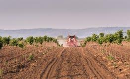 在樱桃园的拖拉机喷洒的杀虫剂 免版税库存照片