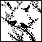 在樱桃树的鸟 免版税库存图片
