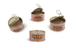 在橄榄油里约母马品牌的罐装金枪鱼 库存照片