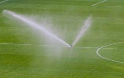 在橄榄球场的浇灌的草皮 库存图片