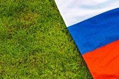 在橄榄球法院沥青草杆线特写镜头的旗子 免版税库存照片