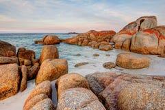 在橙色和红色地衣盖的巨型花岗岩岩石冰砾场面在火海湾在塔斯马尼亚,澳大利亚 免版税库存照片