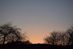 在橙色天空的黑色 库存图片