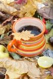 在橙色杯子的热的茶在干叶子 图库摄影