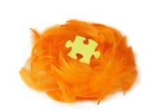 在橙色羽毛巢的难题片断 免版税库存照片
