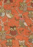 在橙色背景的天真猫头鹰 免版税库存图片