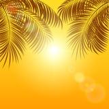 在橙色背景的棕榈 库存例证