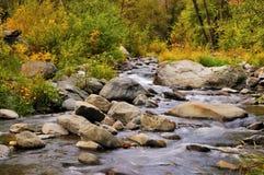 在橡木小河峡谷的秋天 库存照片
