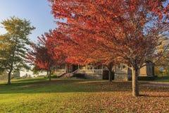 在橡木幽谷地区的美好的秋天颜色 免版税库存照片