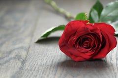 在橡木桌上的一朵红色玫瑰 免版税库存图片